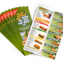 Full Colour Flyers Printing